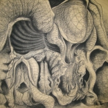 """Coyote Skull Distortion"""
